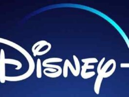 10 Disney Plus Productions you Haven't Seen but Should Need to Watch